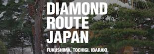 ダイヤモンドルートジャパン